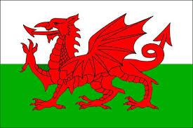 welsh dragon.png