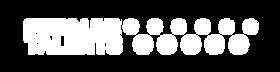 SLT_Logo_oblong-blanc.png