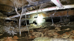 Unbelievable crawlspace