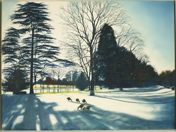 Winter Shadows at Caversham Court. £1,195 Michael Norcross