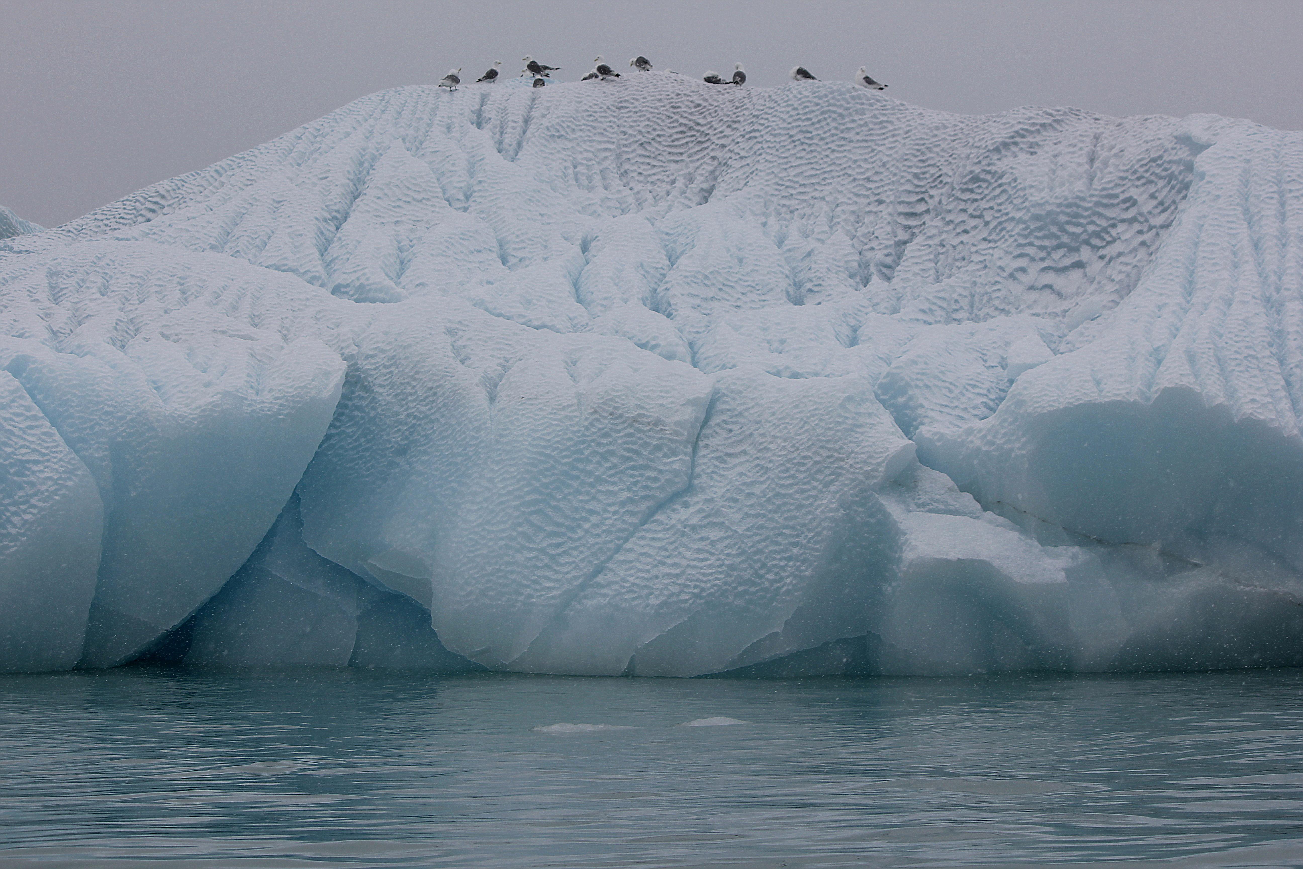 Wind Scoured Iceberg