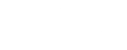 RoÅgue-Productions-Logo_WHT.png