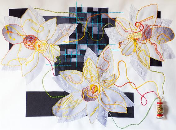 ORCHIDS AFFECTIO - Ana Bouissou
