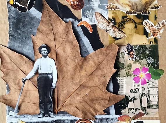 Árvore Dá Vida - Rachel Alvarenga