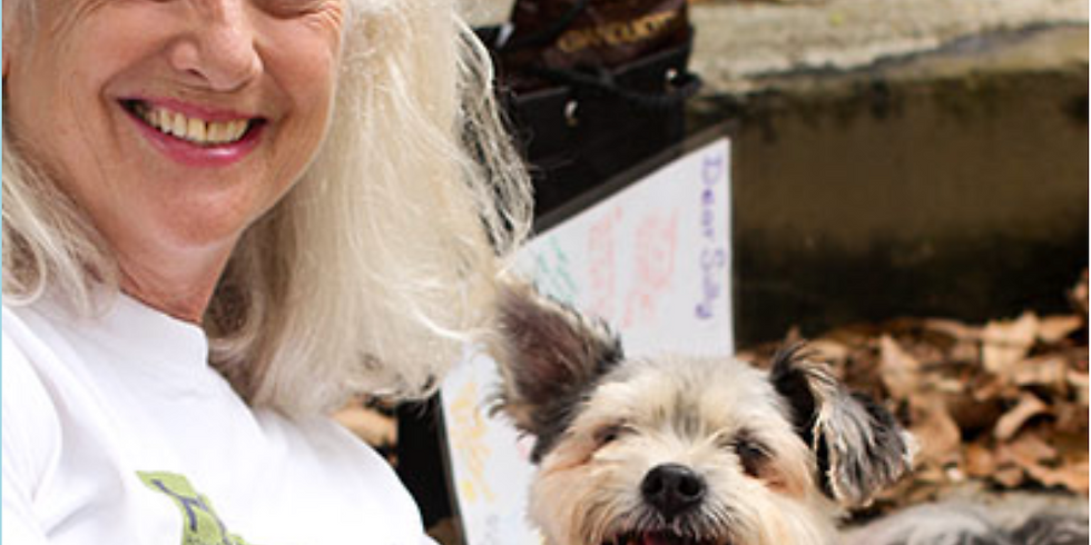 Donation to Animal Shelter
