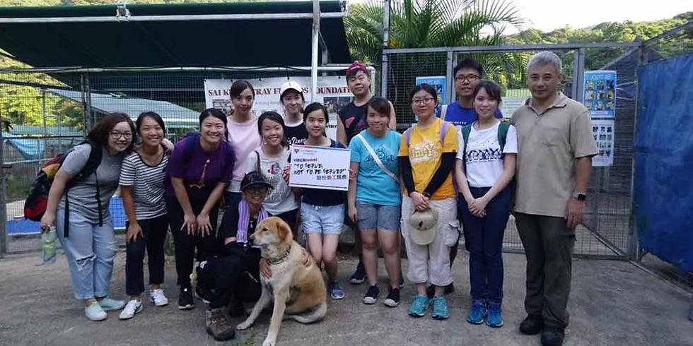 Donation For Animal Food