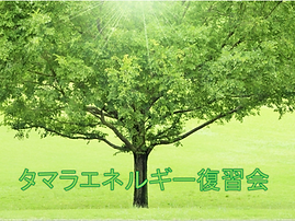 タマラエネルギー復習会.tif