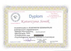 dyplom katarzyna sonik seminarium