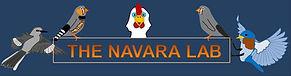 Navara-lab logo yet again.JPG