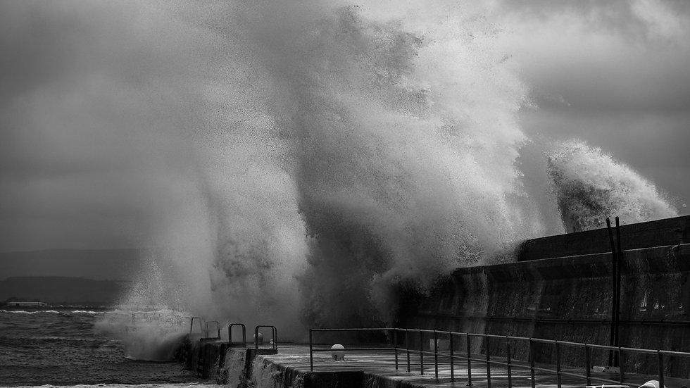 January Storm (B&W)