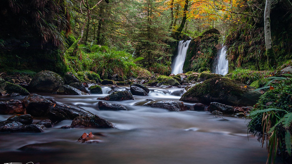 Coolalingo Waterfall Autumn Long exposure