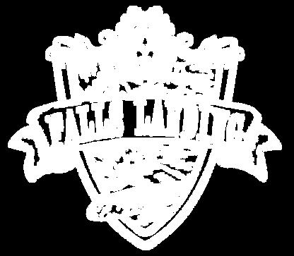 Falls Landing Logo