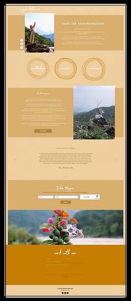 Websites-01.png