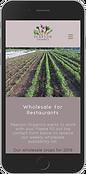 www.pearsonorganicsfarm.com_wholesale(iP