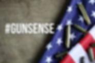 Gun Sense.jpg