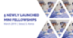 5 NEWLY LAUNCHED MINI FELLOWSHIPS IN SEO