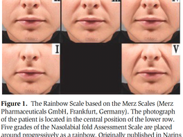 The Rainbow Scale: A Simple, Validated Online Method to Score the Outcome of Aesthetic Treatments