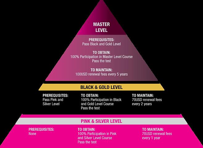 Shefighter-Levels-scheme.png