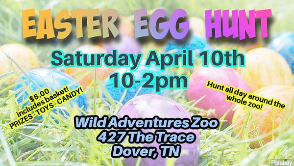 Easter-eggs (1).jpg