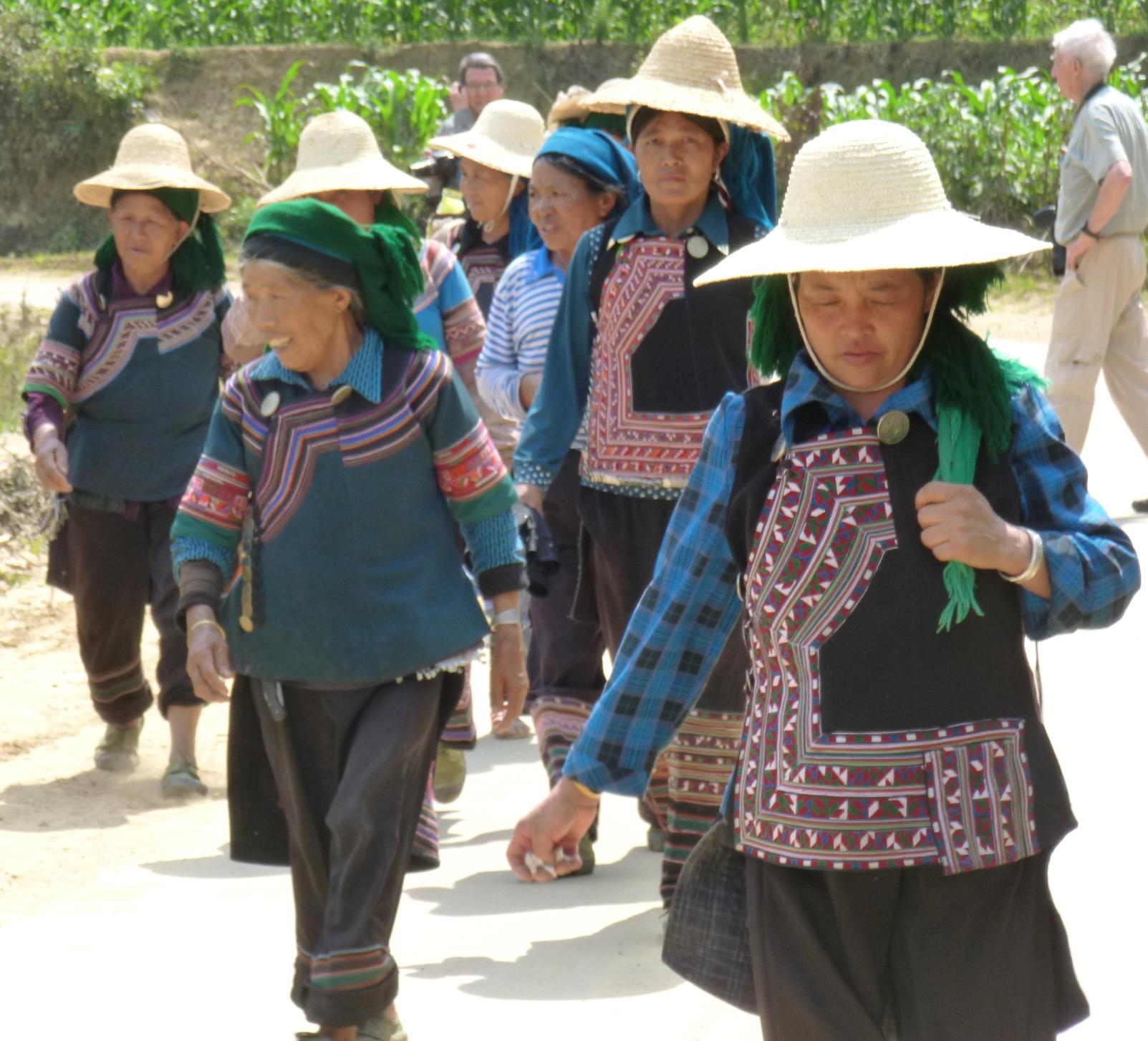 les Hani dans les rizières