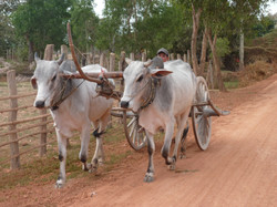 transport khmer