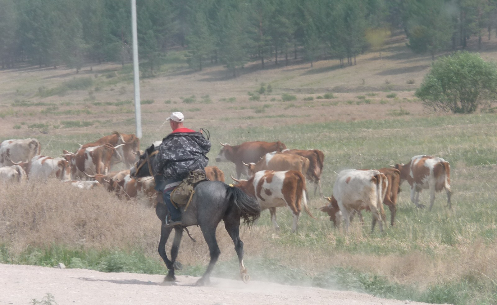 Les cavaliers de la steppe