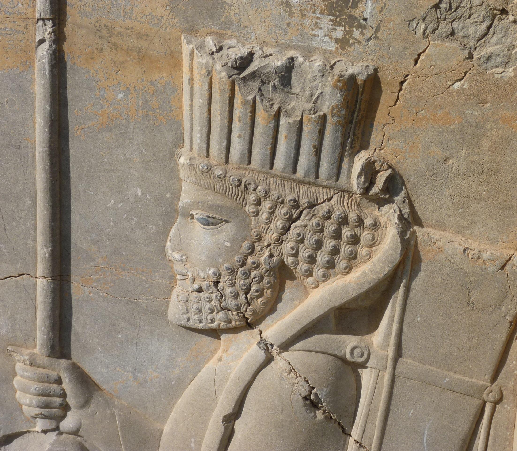Persépolis, Darius