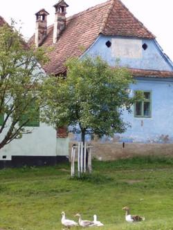 maison de Viscri