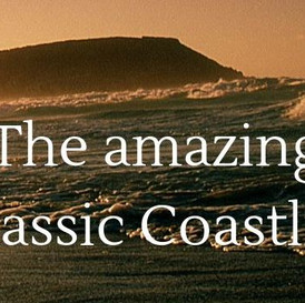Colateral for Jurassic Coast Trust