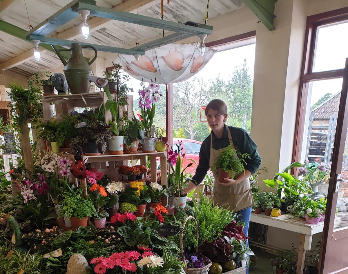 The Garden Shop, Colyton
