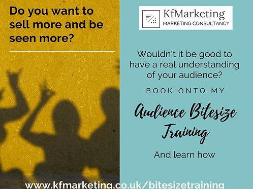 Your Audience Bitesized