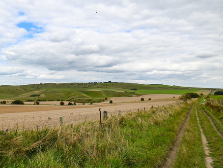 Podcast 8 : Ranscombe Bottom and Morgan's Hill (and the naked highwaymen)