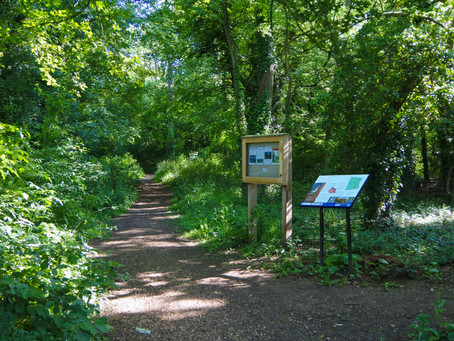 Vincients Wood, Chippenham