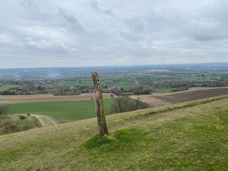 King's Play Hill and the search for a Long Barrow