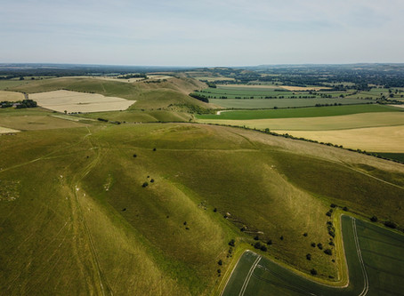 Milk Hill and the Pewsey Downs