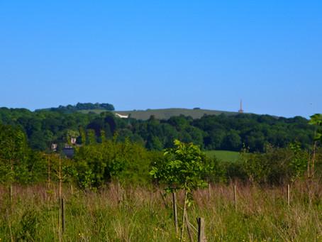 Penn Wood, Calne