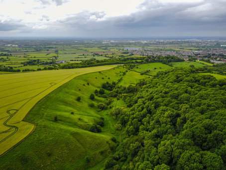 Clouts Wood and Markham Banks, Wroughton