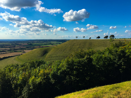 Roundway Down, Devizes