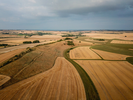 Dry Wiltshire