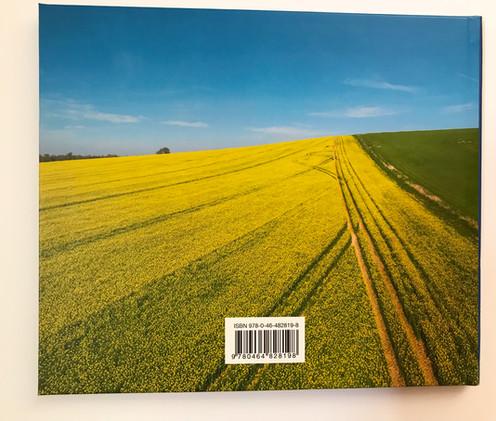 book-2.jpg