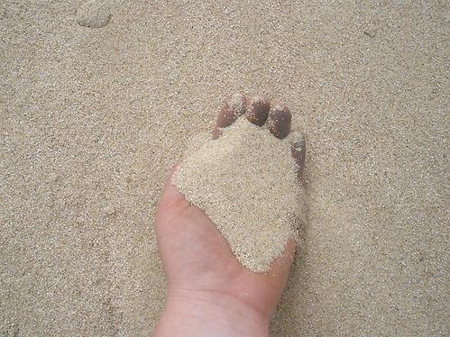 fine sand.jpg