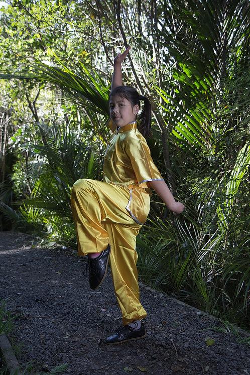 Wu Shu/Kung Fu uniform