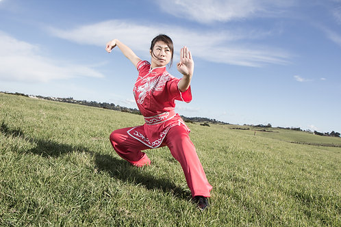 Silk WuShu/Kung Fu uniform