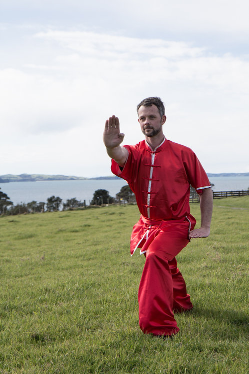 WuShu/Kung Fu uniform