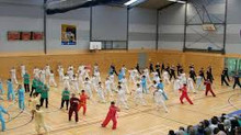 World Tai Chi& Qigong Day in AUCKLAND