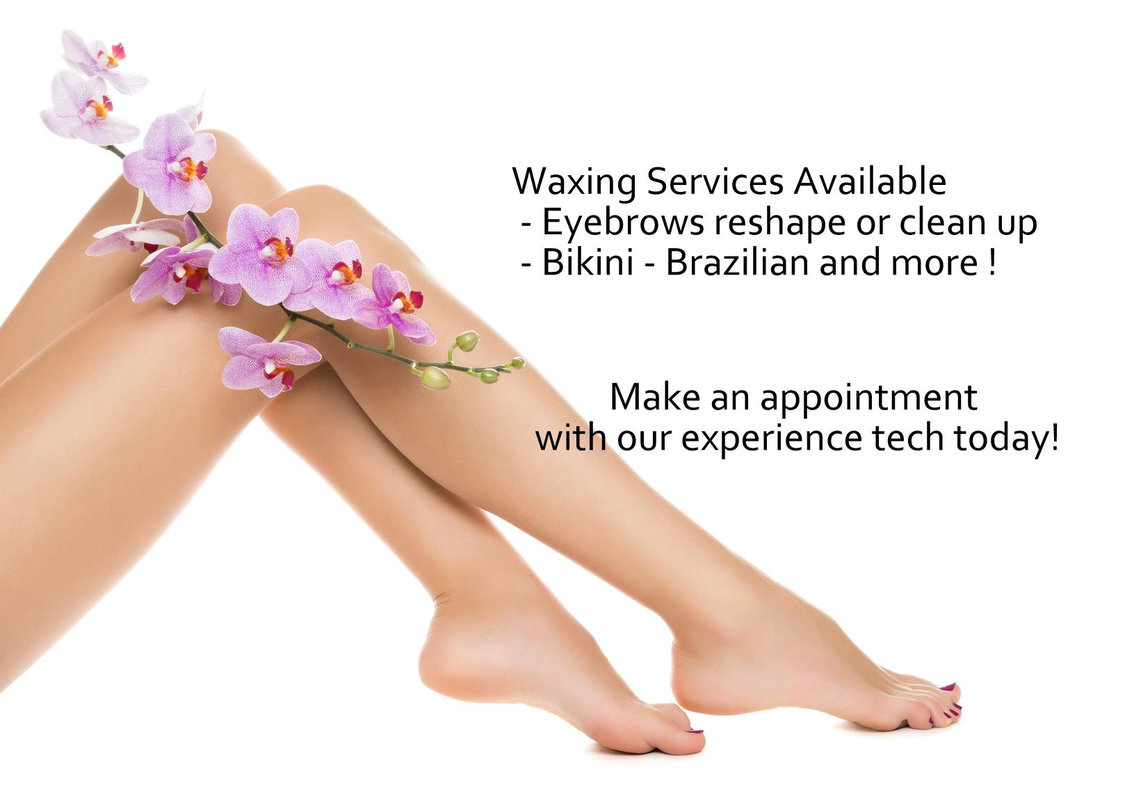 Bikini - Brazilian - Brows