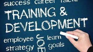 The Importance of Training and Development Programs