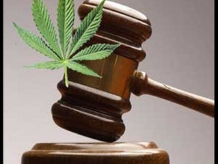Medical and Recreational Marijuana Use and the Workplace