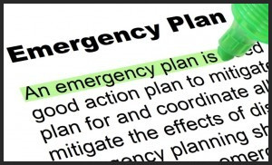 Business Emergency Action Plan