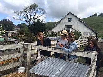 Harley Goat Farm April 2018